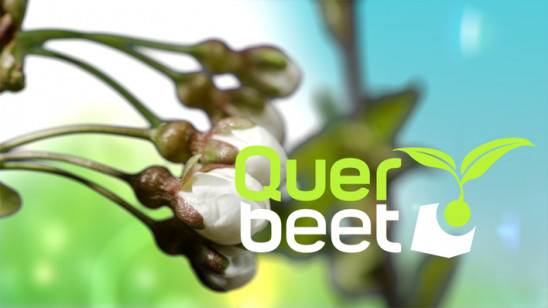 Sendungsbild: Querbeet Classix