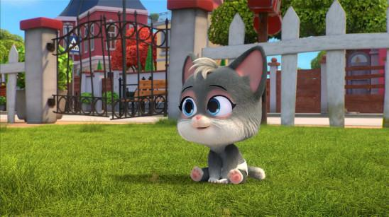 Sendungsbild: 44 Cats