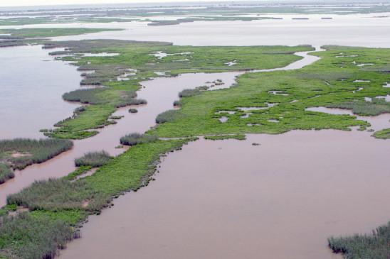 Sendungsbild: An den Ufern des Mississippi