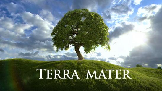 Sendungsbild: Terra Mater – Der mit den Löwen spricht