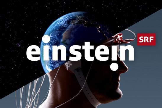 Sendungsbild: Einstein im Reich der Orang-Utans