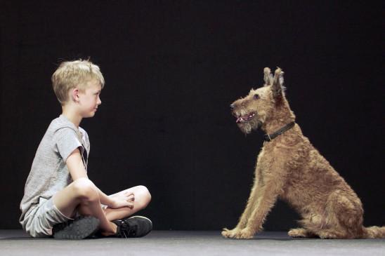 Sendungsbild: Hund und Mensch