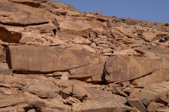 Sendungsbild: Wüstenschiffe: Von Kamelen und Menschen
