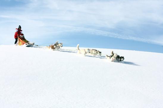 Sendungsbild: Weiß wie Schnee