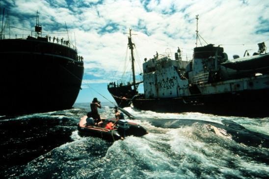 Sendungsbild: Greenpeace – Wie alles begann ...