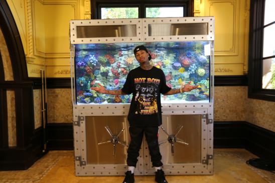 Sendungsbild: Die Aquarium-Profis