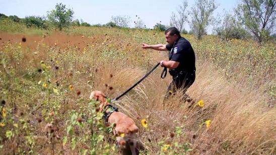Sendungsbild: Amerikas heiße Grenze: Die Hundestaffel