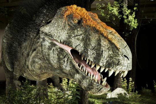 Sendungsbild: T-Rex: Das wahre Biest hinter der Legende