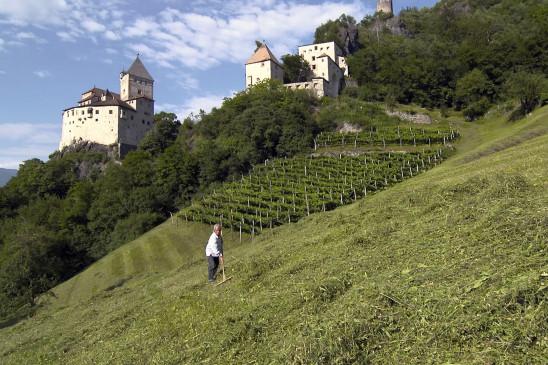 Sendungsbild: Südtirol – Zwischen Brenner und Bozen
